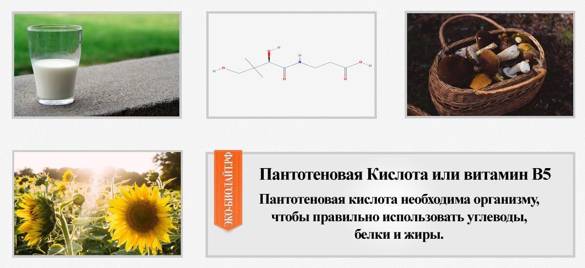 Пантотеновая Кислота или витамин В5
