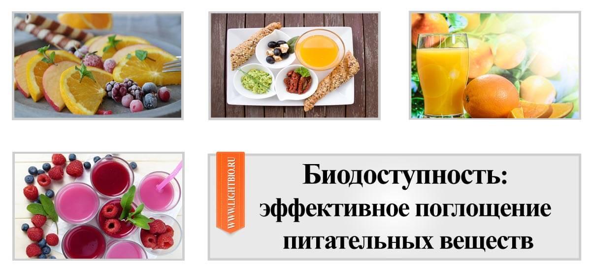 Биодоступность: эффективное поглощение питательных веществ